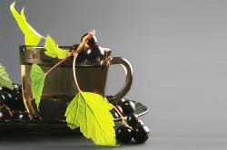 Чай из черной смородины при артрите