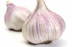 Польза чеснока при артрите