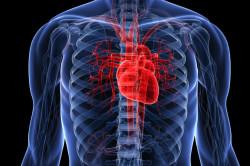 Болезни сердца - противопоказание к ЛФК