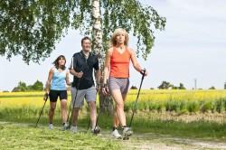 Лечебная ходьба при артрите