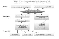 Схема основных иммунопатологических моментов при РА