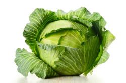 Польза капусты при коксартрозе