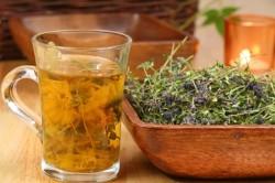 Травяные настои для лечения остеохондроза