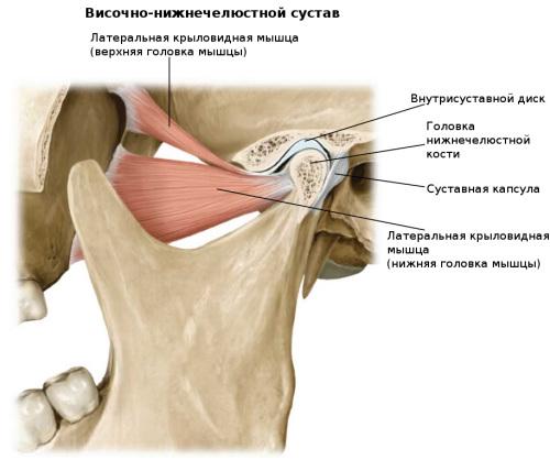 Артрит височно-челюстного сустава: симптомы и лечение