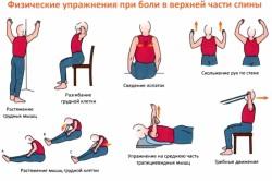 Упражнения при болях от остеохондроза в грудном отделе