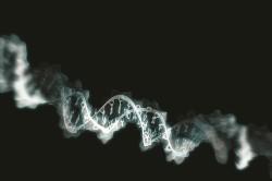 Генетическая расположенность к межпозвоночной грыже